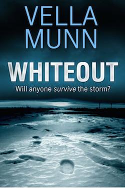 Whiteout by Vella Munn